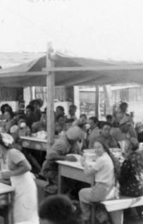Storia del fenomeno comunitario: la stagione dei kibbutzim
